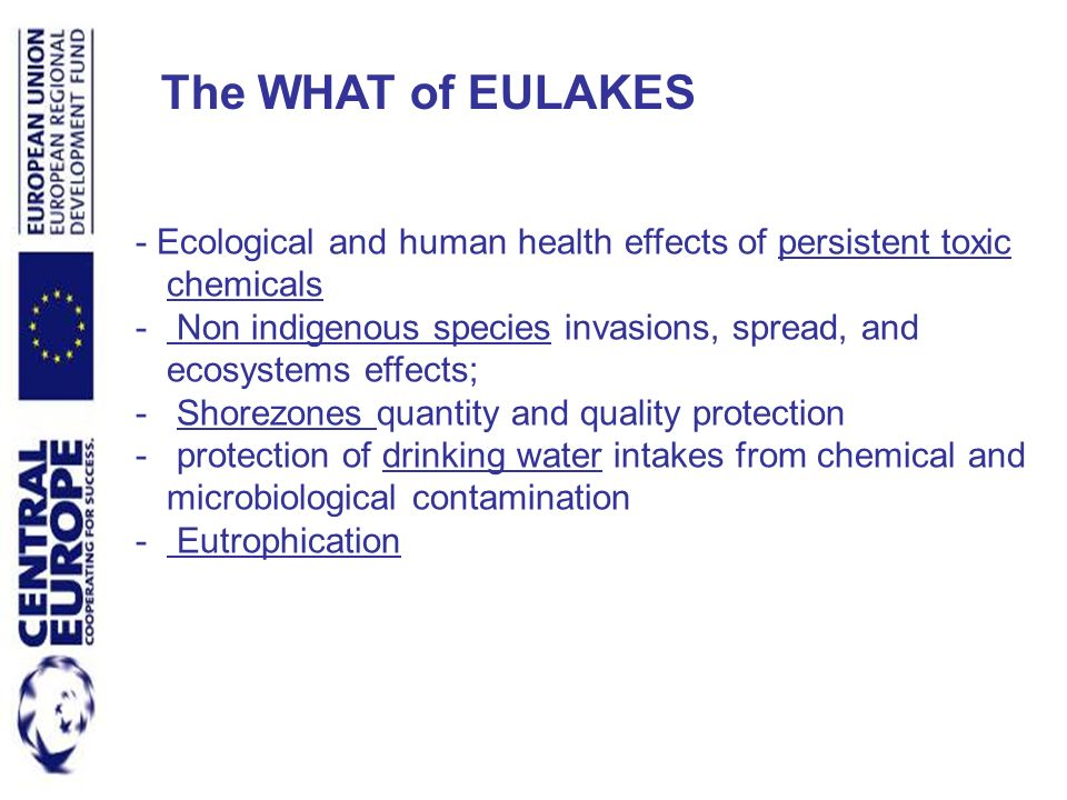 - Ecological and human health effects of persistent toxic chemicals - Non indigenous species invasions, spread, and ecosystems effects; - Shorezones q