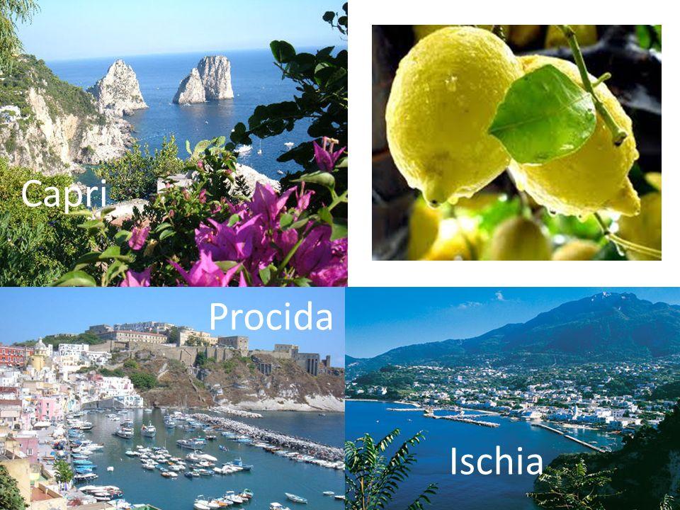 Three Islands in the Gulf of Naples Capri Procida Ischia