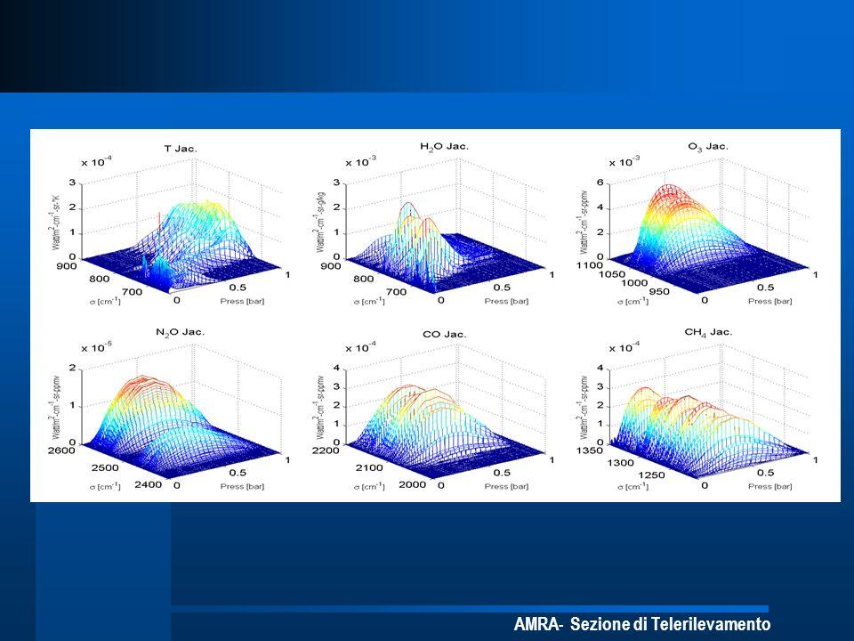 AMRA- Sezione di Telerilevamento