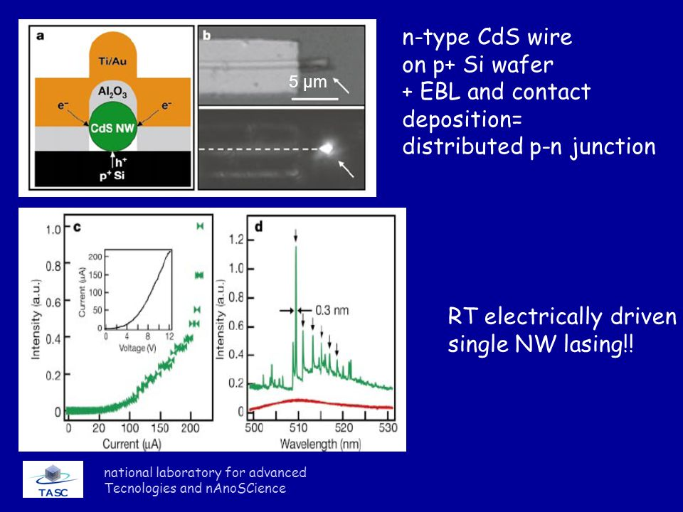 national laboratory for advanced Tecnologies and nAnoSCience 5 μm n-type CdS wire on p+ Si wafer + EBL and contact deposition= distributed p-n junctio