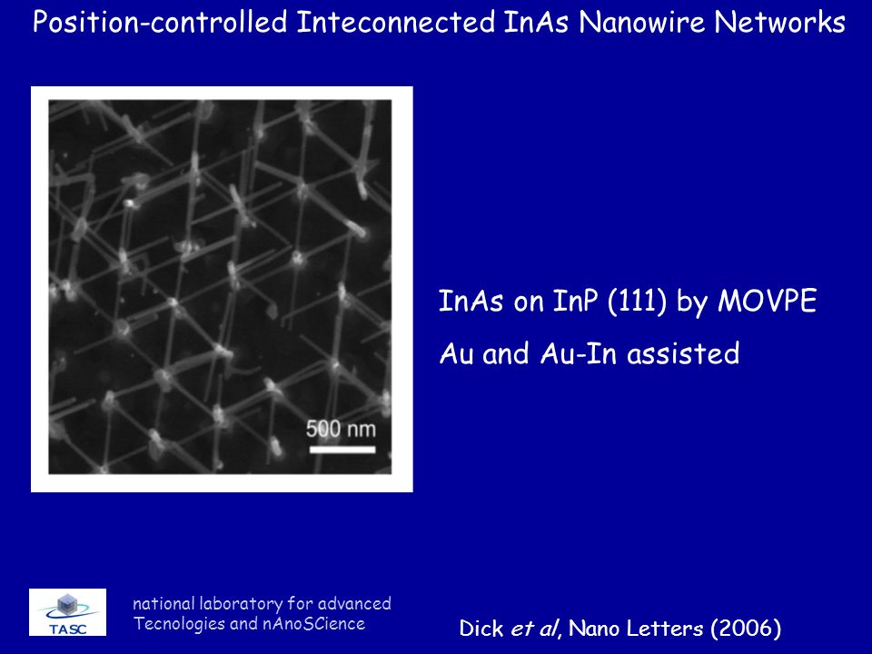 national laboratory for advanced Tecnologies and nAnoSCience Position-controlled Inteconnected InAs Nanowire Networks InAs on InP (111) by MOVPE Au an