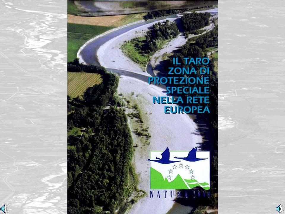 Taro-LIFE, Azioni per la Natura (Taro-LIFE, Actions toward Nature)