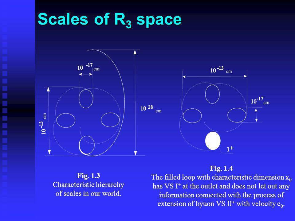 Scales of R 3 space Fig. 1.3 Characteristic hierarchy of scales in our world. Fig. 1.4 The filled loop with characteristic dimension x 0 has VS I + at