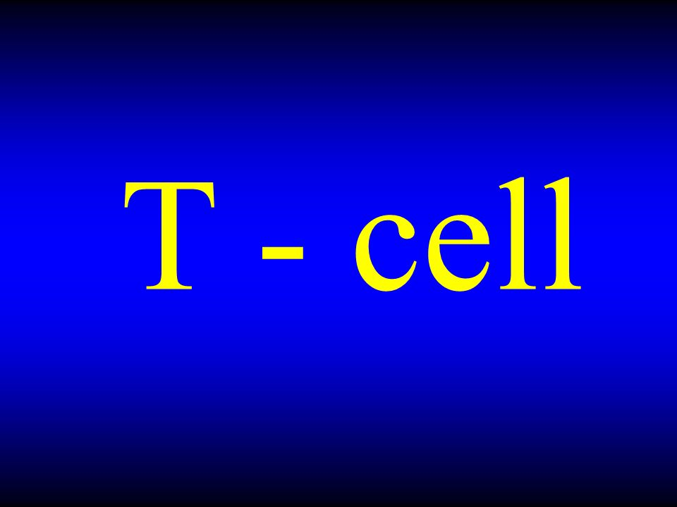 T - cell