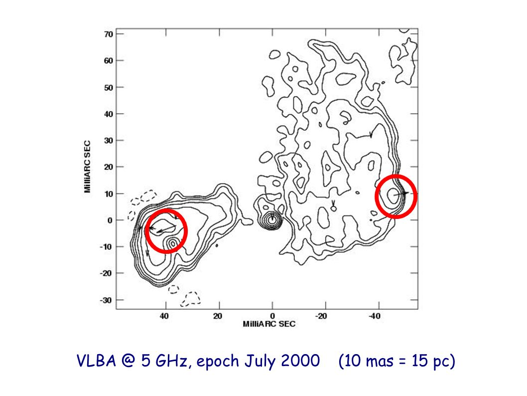 VLBA @ 5 GHz, epoch July 2000 (10 mas = 15 pc)