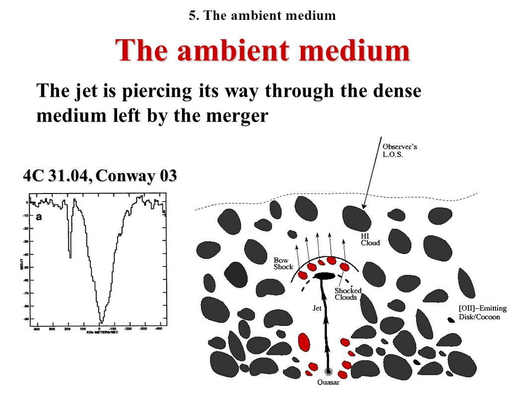 The ambient medium The jet is piercing its way through the dense medium left by the merger 4C 31.04, Conway 03 5. The ambient medium