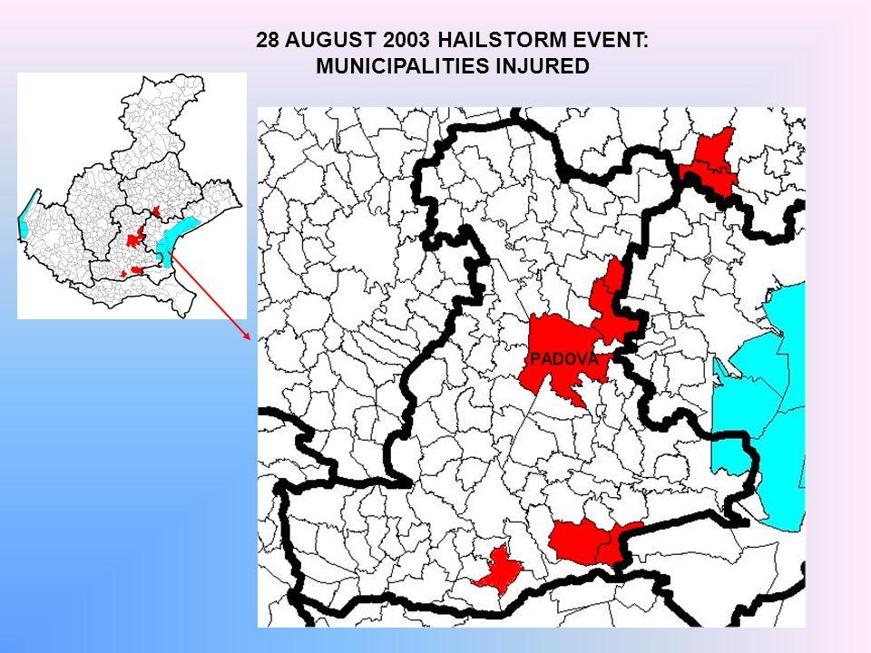 28 AUGUST 2003 HAILSTORM EVENT: MUNICIPALITIES INJURED