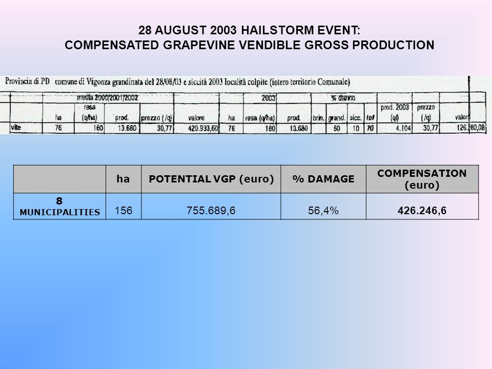 28 AUGUST 2003 HAILSTORM EVENT: COMPENSATED GRAPEVINE VENDIBLE GROSS PRODUCTION haPOTENTIAL VGP (euro)% DAMAGE COMPENSATION (euro) 8 MUNICIPALITIES 156755.689,656,4%426.246,6