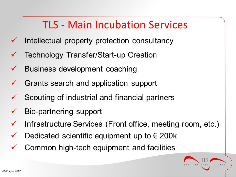TLS - Main Incubation Services Intellectual property protection consultancy Technology Transfer/Start-up Creation Business development coaching Grants