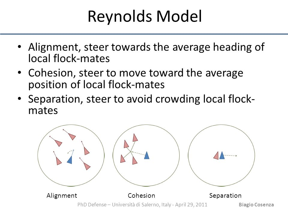 PhD Defense – Università di Salerno, Italy - April 29, 2011Biagio Cosenza Reynolds Model Alignment, steer towards the average heading of local flock-m