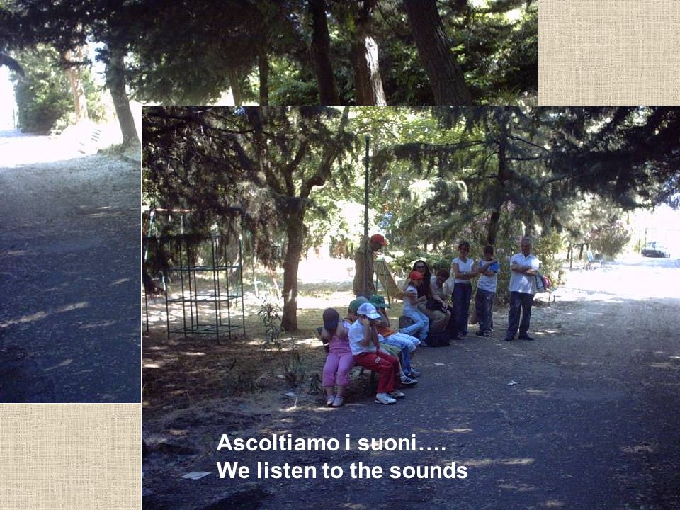Ascoltiamo i suoni…. We listen to the sounds
