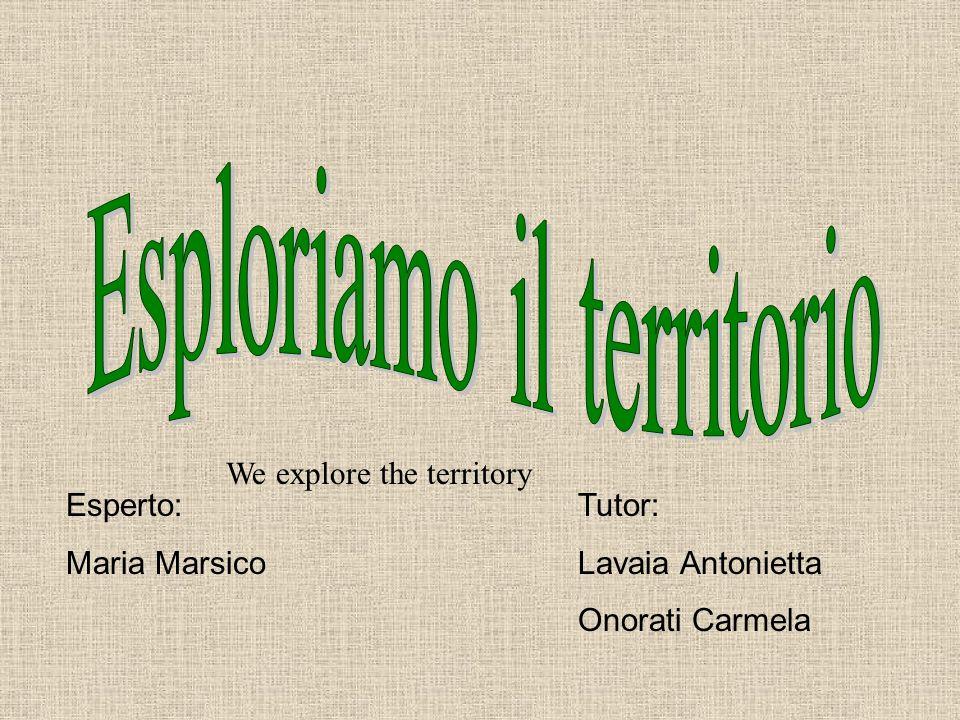 Esperto: Maria Marsico Tutor: Lavaia Antonietta Onorati Carmela We explore the territory