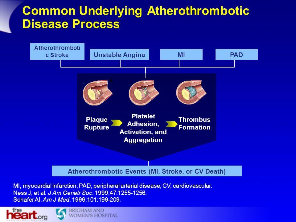 Common Underlying Atherothrombotic Disease Process MI, myocardial infarction; PAD, peripheral arterial disease; CV, cardiovascular. Ness J, et al. J A
