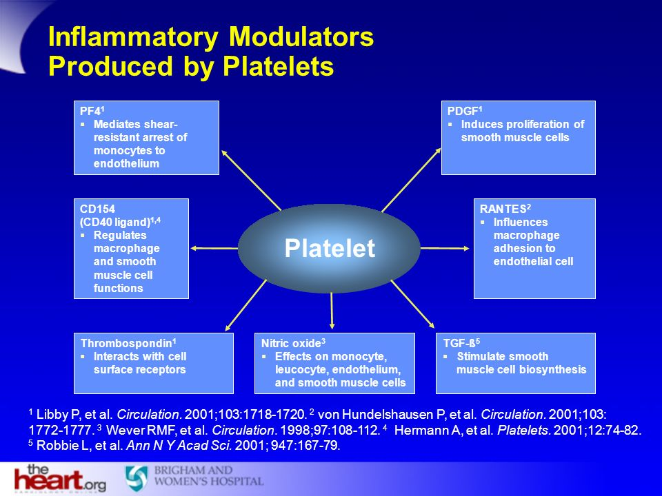 Inflammatory Modulators Produced by Platelets TGF-ß 5 Stimulate smooth muscle cell biosynthesis Nitric oxide 3 Effects on monocyte, leucocyte, endothe