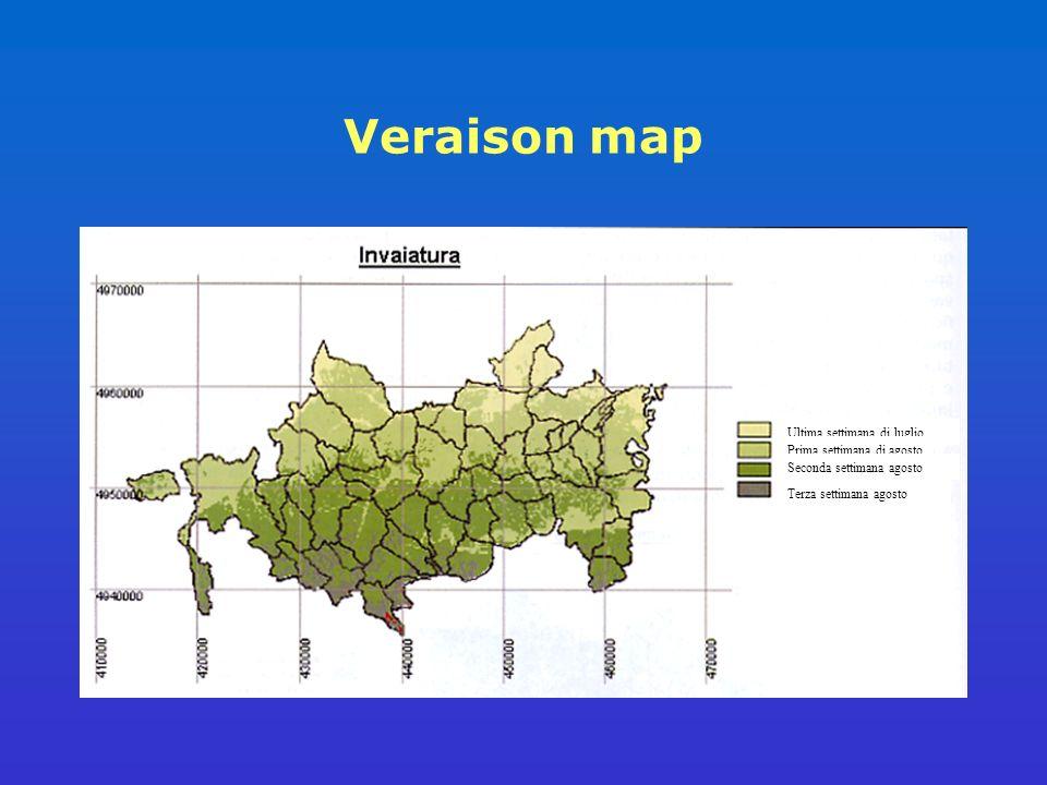 Veraison map Ultima settimana di luglio Prima settimana di agosto Seconda settimana agosto Terza settimana agosto