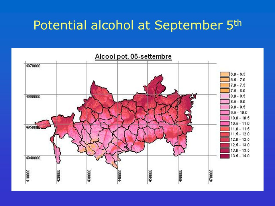 Potential alcohol at September 5 th