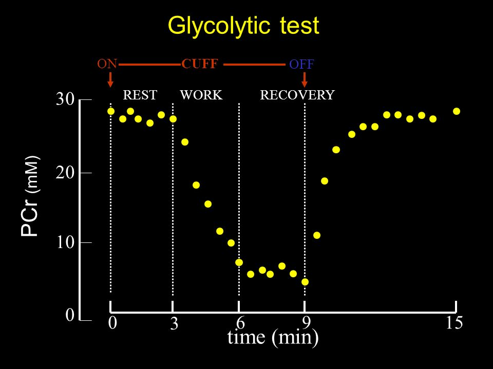 PCr (mM) Glycolytic test 0 10 CUFFON OFF REST RECOVERY 30 20 WORK 96 3 015 time (min)
