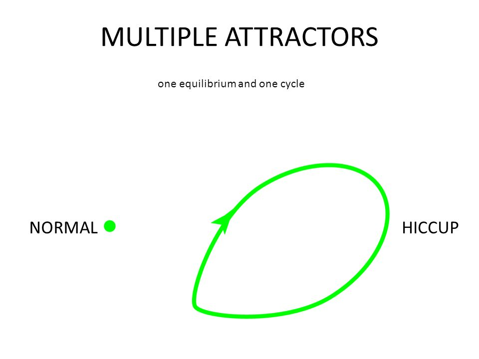 MULTIPLE ATTRACTORS NORMALHICCUP one equilibrium and one cycle