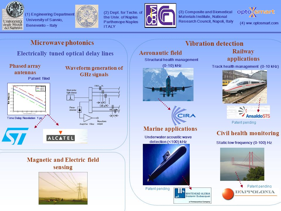 (1) Engineering Department University of Sannio, Benevento – Italy (3) Composite and Biomedical Materials Institute, National Research Council, Napoli, Italy (2) Dept.