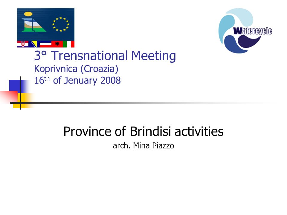3° Trensnational Meeting Koprivnica (Croazia) 16 th of Jenuary 2008 Province of Brindisi activities arch. Mina Piazzo