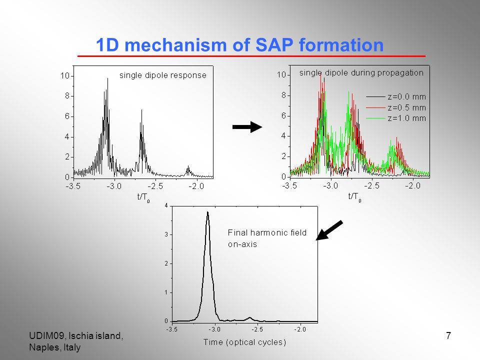 UDIM09, Ischia island, Naples, Italy 7 1D mechanism of SAP formation