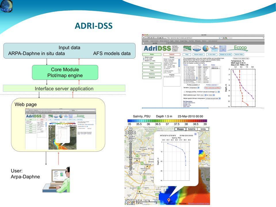ADRI-DSS