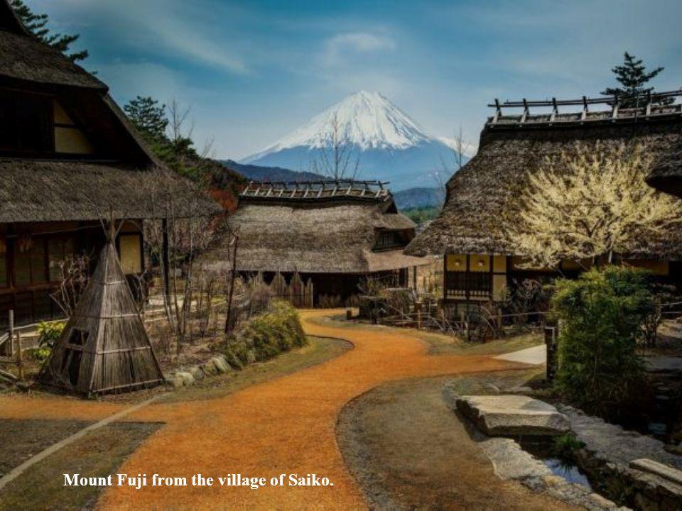 Mount Fuji from the village of Saiko.