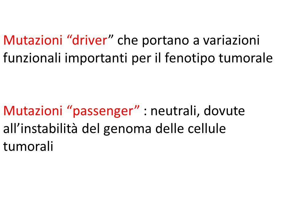 Mutazioni driver che portano a variazioni funzionali importanti per il fenotipo tumorale Mutazioni passenger : neutrali, dovute allinstabilità del gen