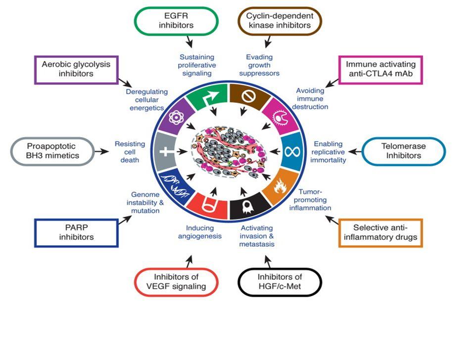La cellula tumorale acquisisce queste caratteristiche mediante mutazioni alterazioni epigenetiche in un processo mutagenico multi-step