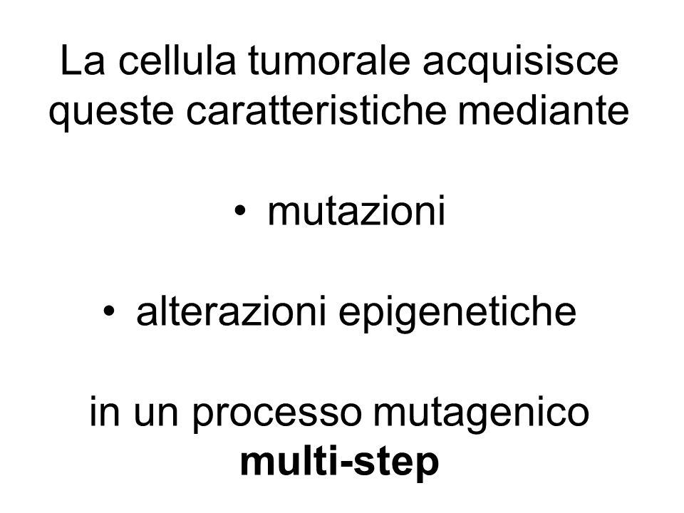 Mutazioni Mutazioni puntiformi Brevi inserzioni/delezioni CNA (copy number abnormalities): gain, loss, amplificazioni Aberrazioni cromosomiche bilanciate: traslocazioni, inversioni