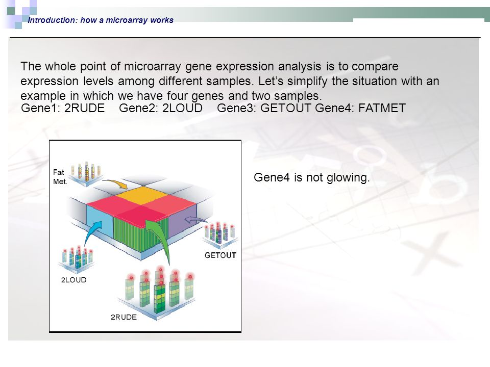 Introduction: how a microarray works The whole point of microarray gene expression analysis is to compare expression levels among different samples.