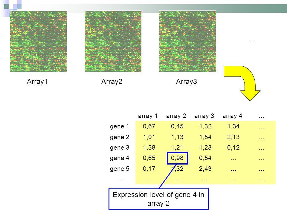 Array1Array2Array3 … array 1array 2array 3array 4… gene 10,670,451,321,34… gene 21,011,131,542,13… gene 31,381,211,230,12… gene 40,650,980,54…… gene 50,171,322,43…… ……………… Expression level of gene 4 in array 2