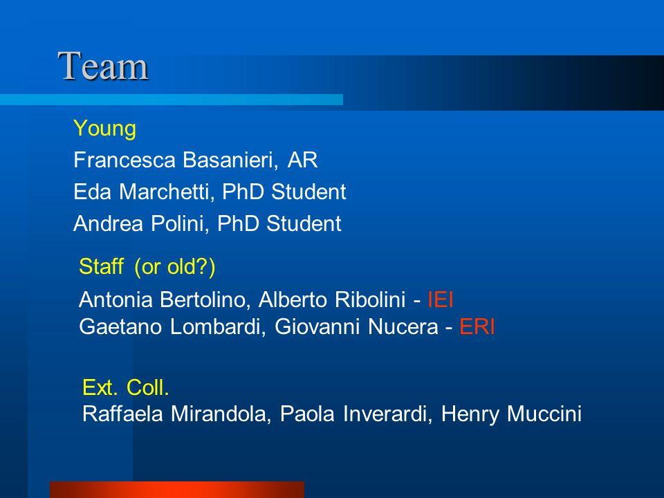 Team Young Francesca Basanieri, AR Eda Marchetti, PhD Student Andrea Polini, PhD Student Antonia Bertolino, Alberto Ribolini - IEI Gaetano Lombardi, Giovanni Nucera - ERI Staff Ext.