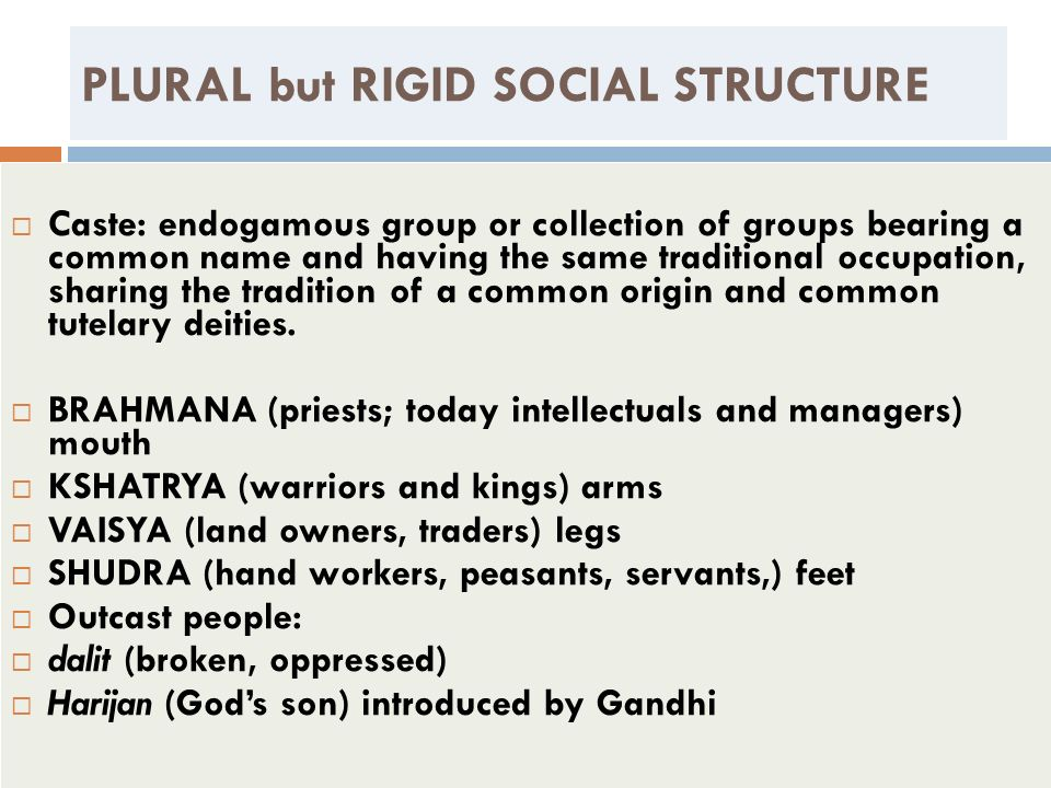 PLURAL but RIGID SOCIAL STRUCTURE Caste: endogamous group or collection of groups bearing a common name and having the same traditional occupation, sh