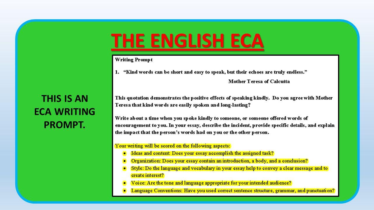 art essay writing eca