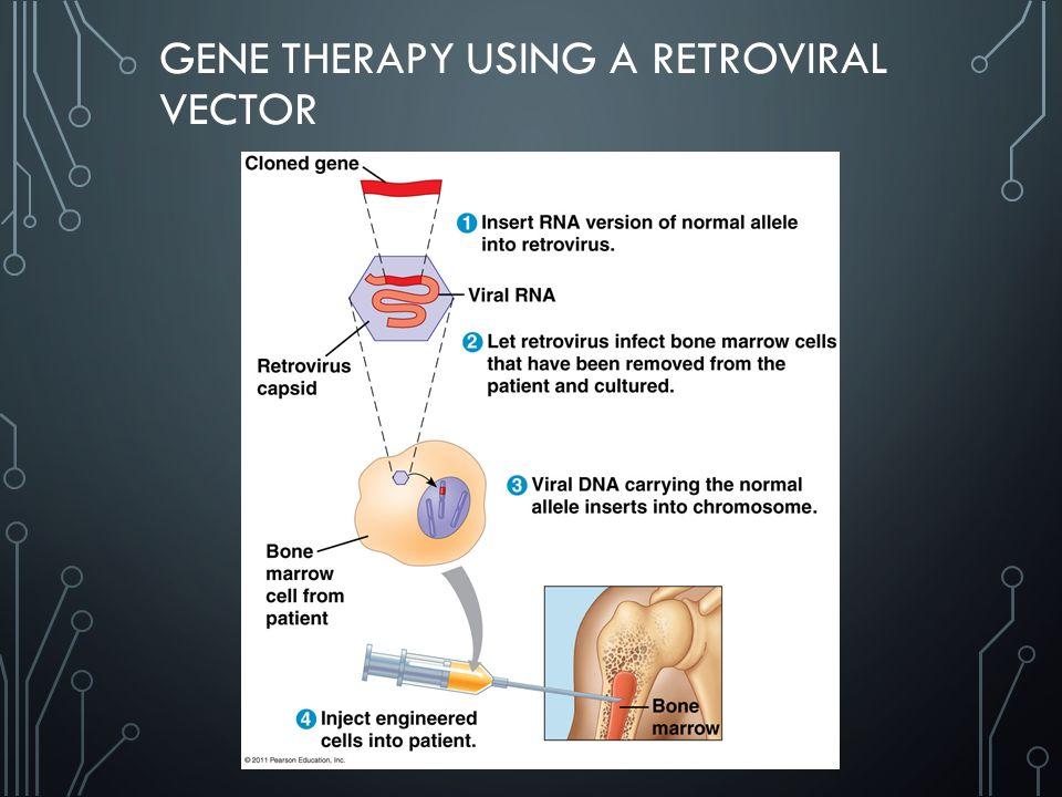 GENE THERAPY USING A RETROVIRAL VECTOR