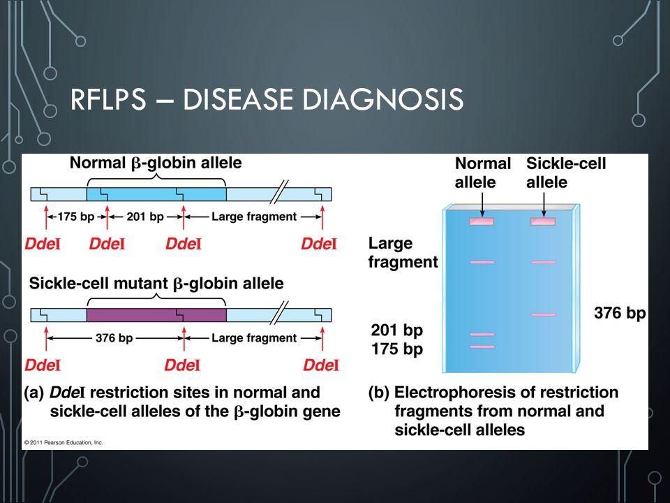 RFLPS – DISEASE DIAGNOSIS