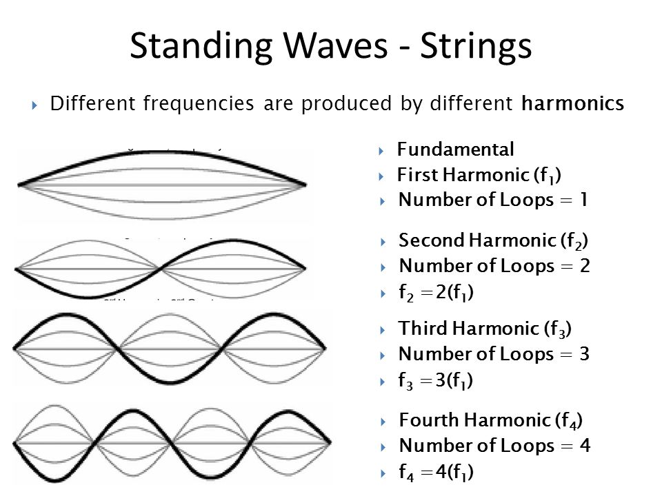Standing Waves - Strings  Different frequencies are produced by different harmonics  Fundamental  First Harmonic (f 1 )  Number of Loops = 1  Second Harmonic (f 2 )  Number of Loops = 2  f 2 =2(f 1 )  Third Harmonic (f 3 )  Number of Loops = 3  f 3 =3(f 1 )  Fourth Harmonic (f 4 )  Number of Loops = 4  f 4 =4(f 1 )