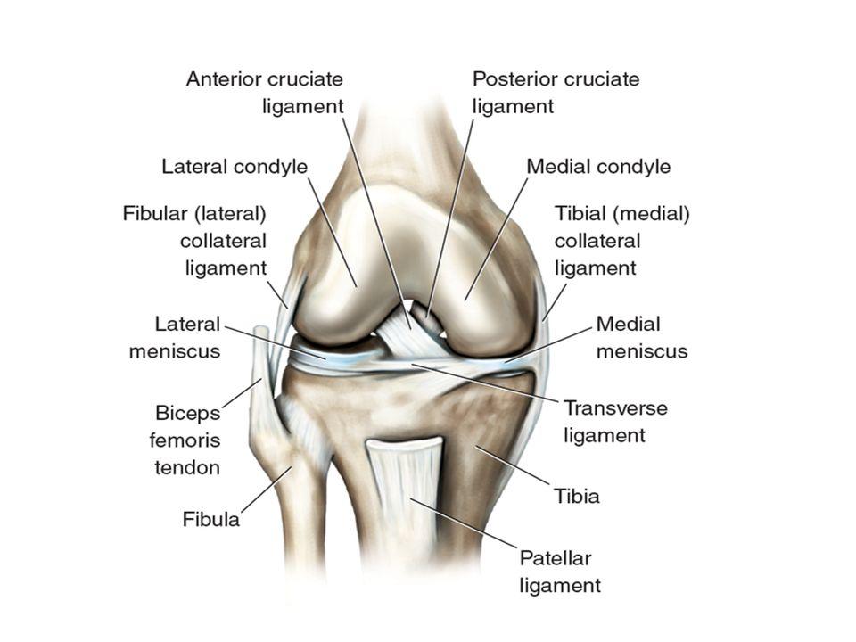 4 Knee Injury Presents
