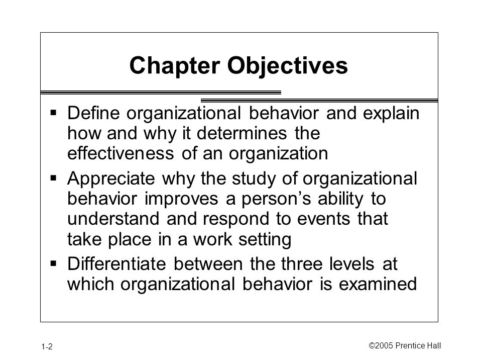 1-2 ©2005 Prentice Hall Chapter Objectives  Define organizational behavior and explain how and why it determines the effectiveness of an organization  Appreciate why the study of organizational behavior improves a person's ability to understand and respond to events that take place in a work setting  Differentiate between the three levels at which organizational behavior is examined