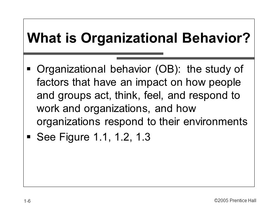 1-6 ©2005 Prentice Hall What is Organizational Behavior.