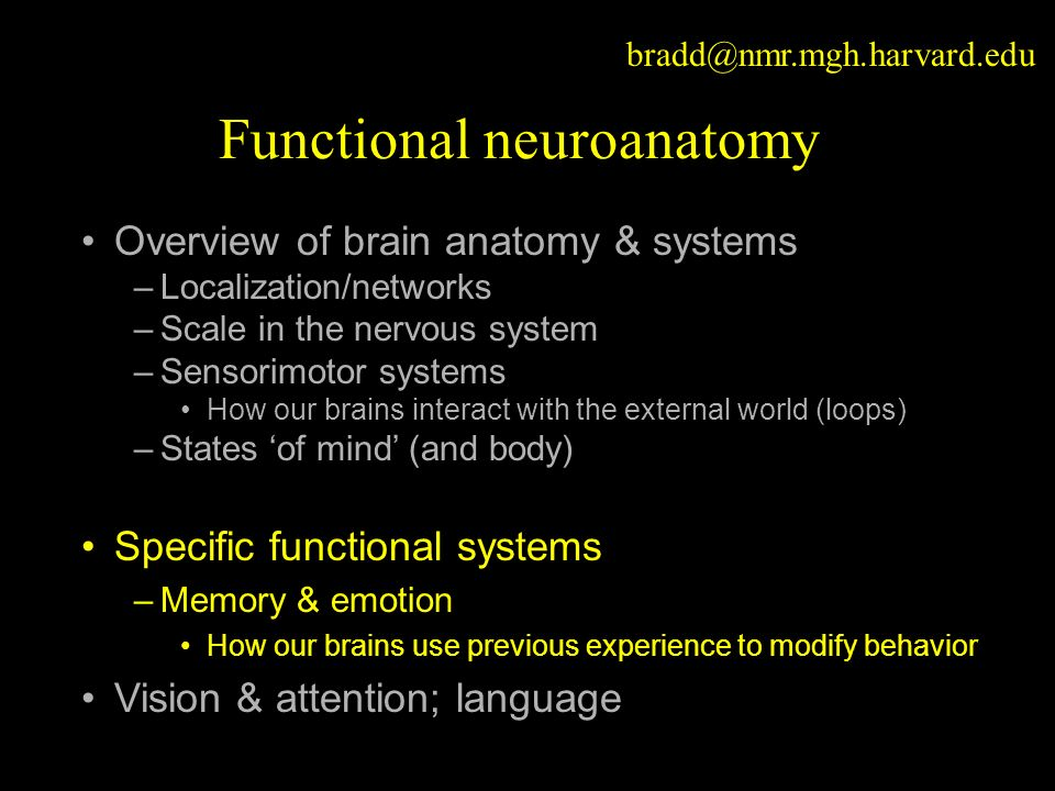 Functional neuroanatomy Overview of brain anatomy & systems –Localization/networks –Scale in the nervous system –Sensorimotor systems How our brains interact with the external world (loops) –States 'of mind' (and body) Specific functional systems –Memory & emotion How our brains use previous experience to modify behavior Vision & attention; language