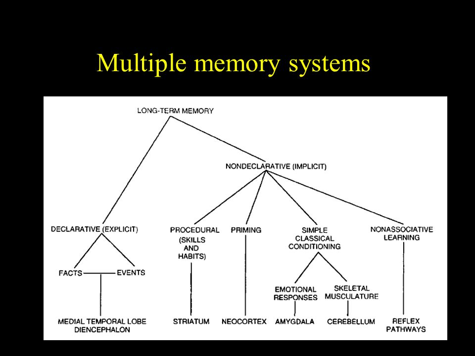 Multiple memory systems