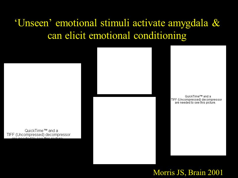 'Unseen' emotional stimuli activate amygdala & can elicit emotional conditioning Morris JS, Brain 2001