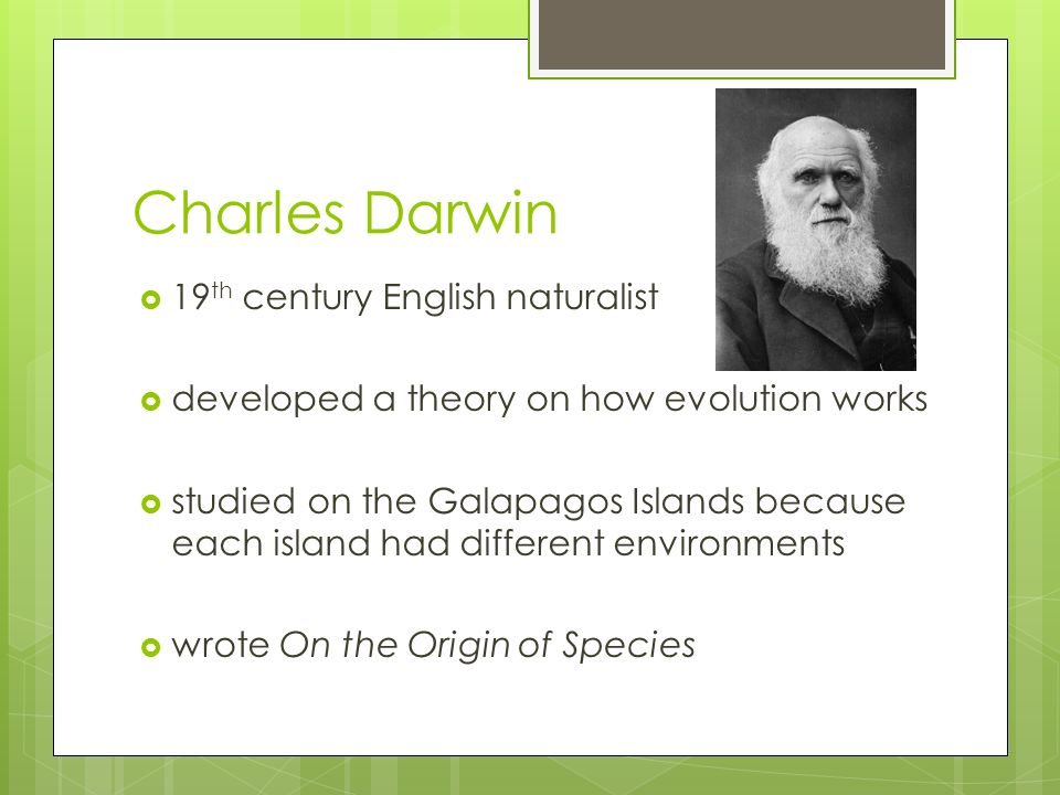 an analysis of charles darwins studies of animals at the galapagos island Darwin, lizards, and evolution laboratory studies have confirmed that each type of habitat the voyages of charles darwin darwin, lizards, and evolution.