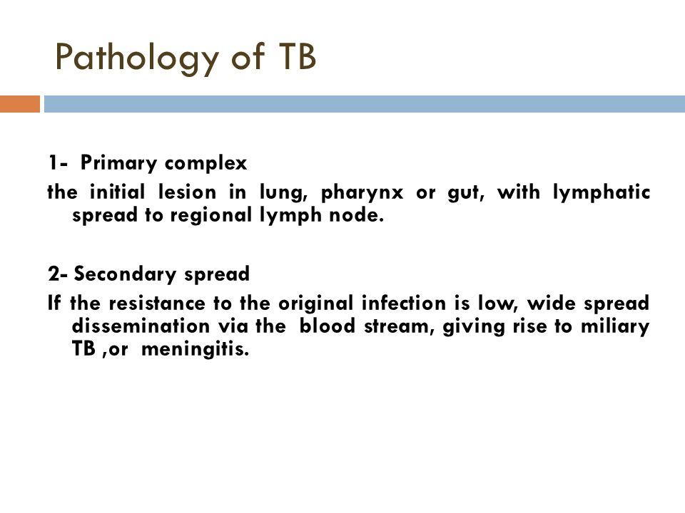 primary complex Calcification in the primary complex is relatively rare very few patients with primary tb have clinical manifestations tuberculosis, post-primary.