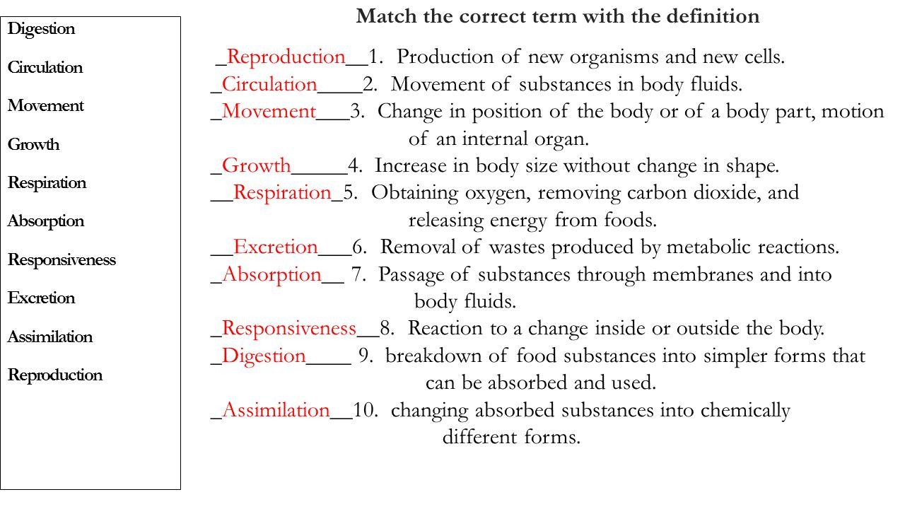 Ziemlich Absorption Anatomie Definition Fotos - Anatomie Ideen ...