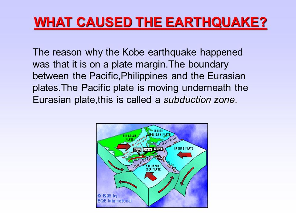case study of kobe earthquake The kobe earthquake - an earthquake affecting an medc the earthquake that hit kobe during the winter of 1995 take more notes to add to you case study profile.