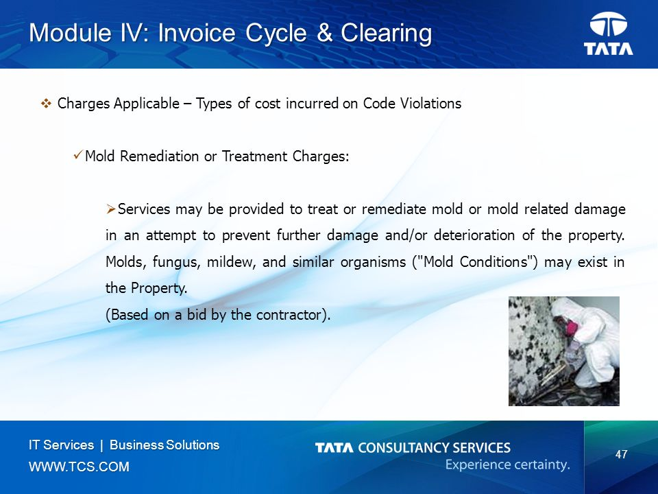 47 IT Services | Business Solutions   Module IV: Invoice Cycle & Clearing  Charges Applicable – Types of cost incurred on Code Violations Mold Remediation or Treatment Charges:  Services may be provided to treat or remediate mold or mold related damage in an attempt to prevent further damage and/or deterioration of the property.