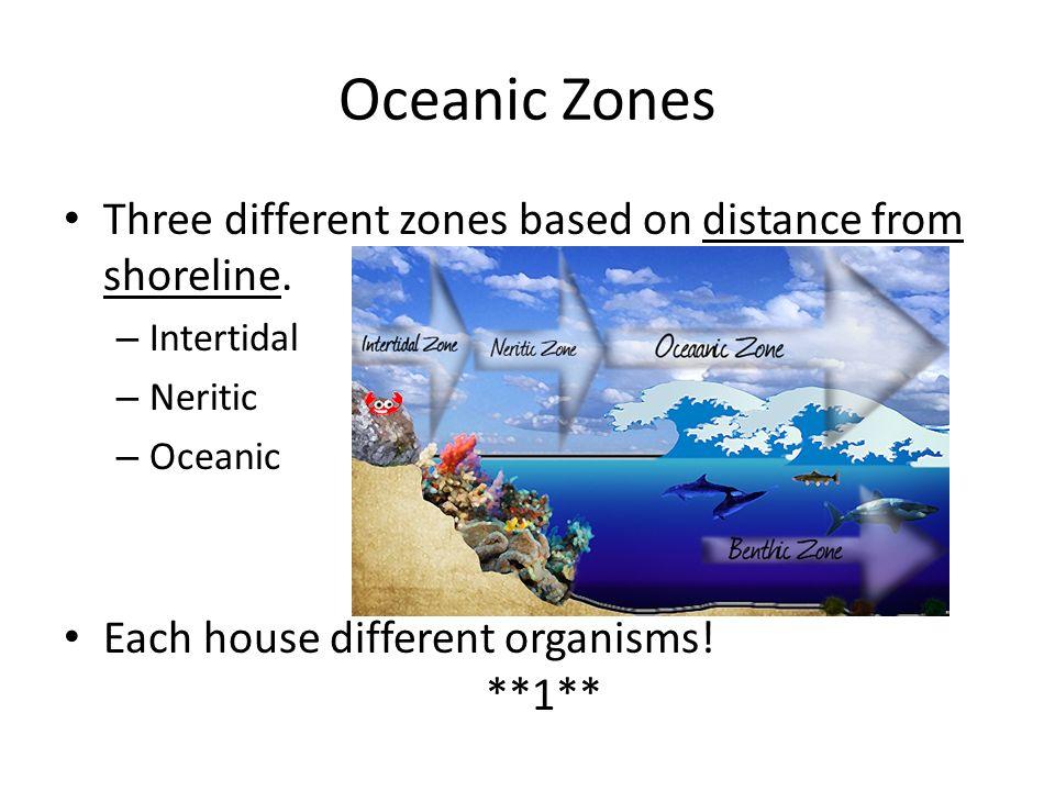 Intertidal Description: Shoreline area between high and low tide mark.